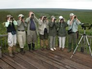 Andy birding with a group at Emas National Park (Cerrado & Native Grasslands), central Brazil.