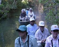 Group birding at Roosevelt river in the Amazon (Rondônia state).