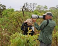 Photographing and birding in the Cerrado habitat of Chapada dos Guimarães National Park