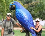 Rick, Debbie and the Hyacinth Macaw (bird symbol of the Pantanal biome)