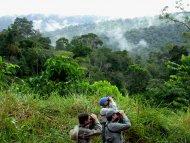 Group birding in Amazonia.