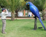 Andy birding in the Pantanal