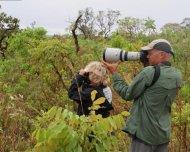 Photographing and birding in the Cerrado habitat of Chapada dos Guimarães National Park