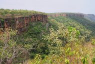 Canyon and its gallery forest in Chapada dos  Guimarães National Park