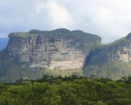 Chapada Dimantina National Park, Bahia (NE Brazil) holds rich caatinga, as well as pockets of Atlantic rainforest and cerrado with many endemics.