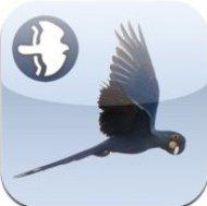 App+Birds+of+Brazil